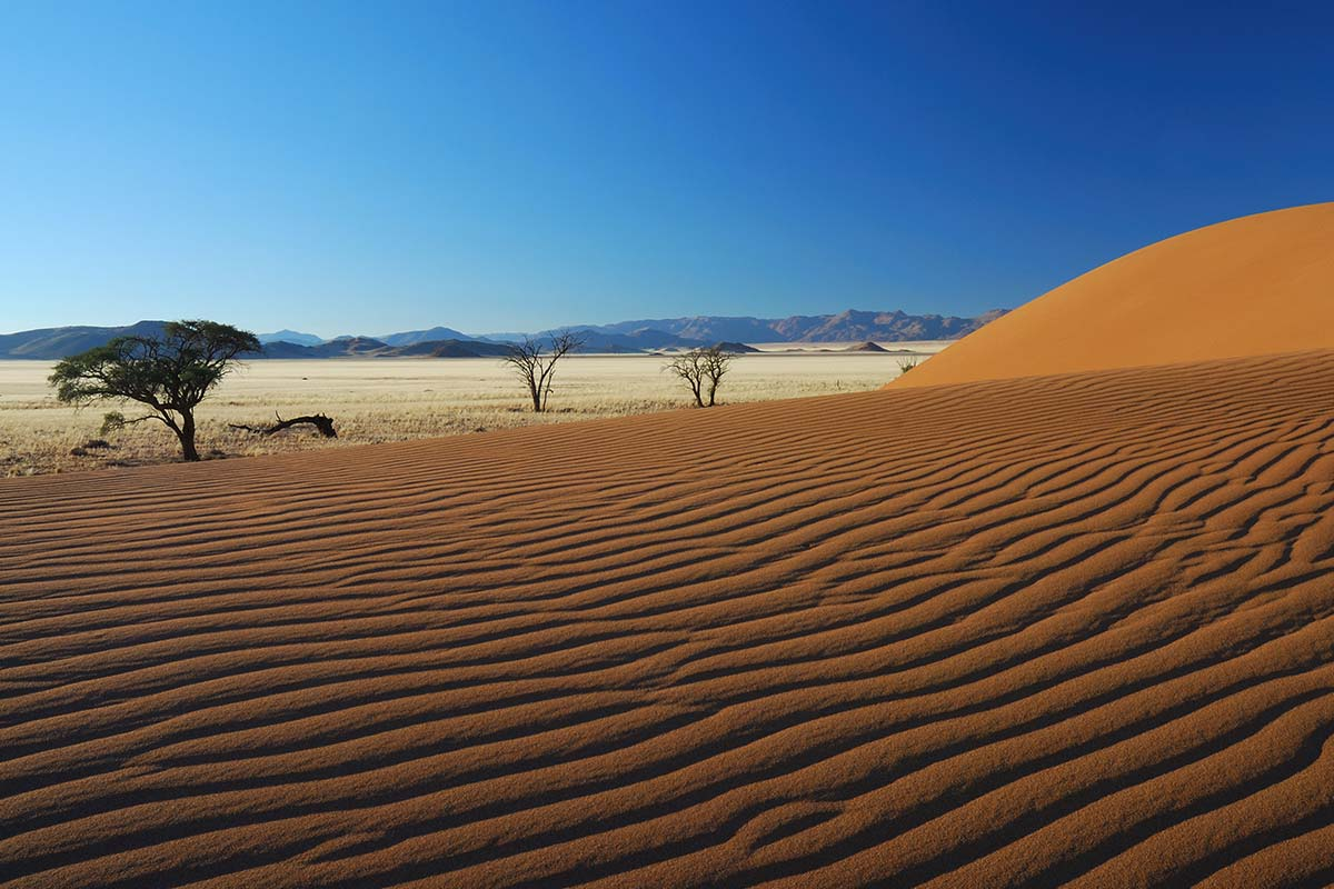 shutterstock_71951626_namibia_Web